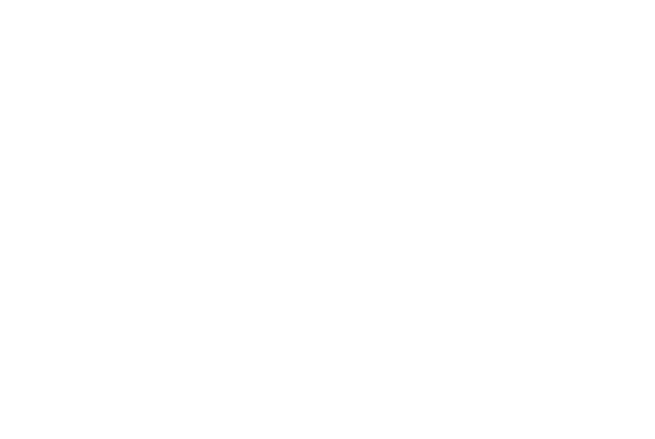 Le Mount Stephen Logo